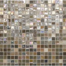 Daltile CL66-1212MS1P