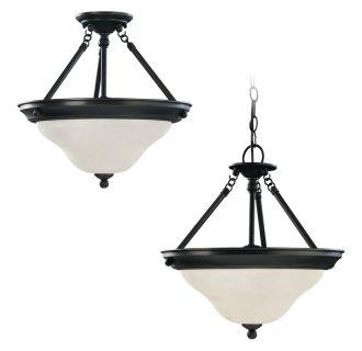 Sea Gull Lighting 66062