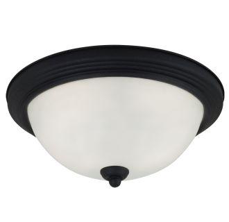 Sea Gull Lighting 77063