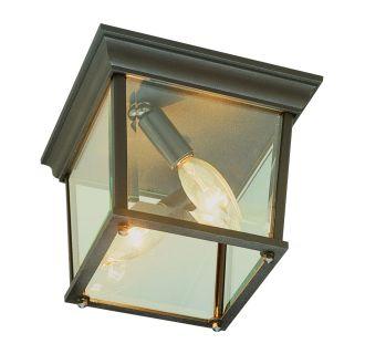 Trans Globe Lighting 4905
