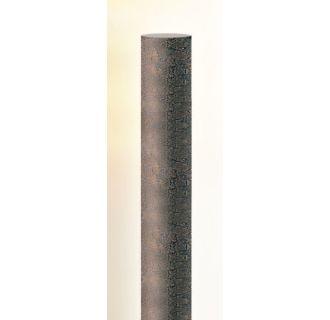 Troy Lighting P4945