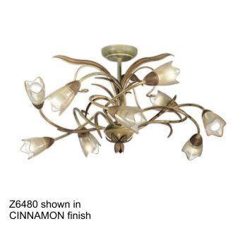 Zaneen Z6480