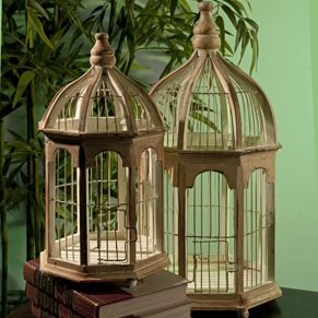 Shop Decorative Bird Cages