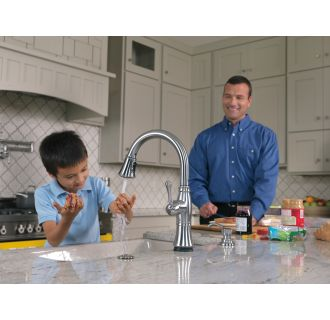 Delta-9197T-DST-Faucet in Use in Arctic Stainless