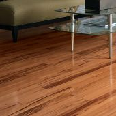 Shop Solid Hardwood