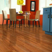 Shop Smooth Laminate Flooring
