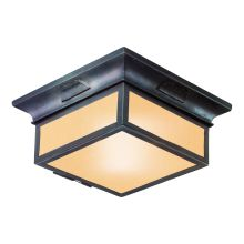Newton 2 Light CFL Energy Star Flush Mount Outdoor Ceiling Fixture