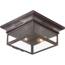 Newton 2 Light Flush Mount Outdoor Ceiling Fixture with Seedy Glass