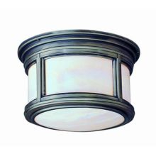 Troy Lighting CFIH6918