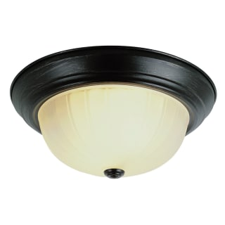 Trans Globe Lighting 13211-1
