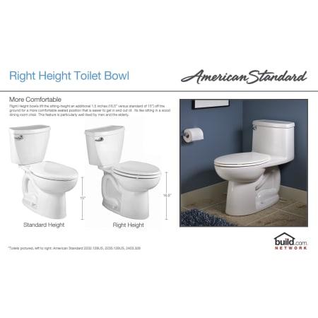 American Standard 2034 014 021 Bone Champion 4 Elongated