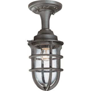 Troy Lighting C1863